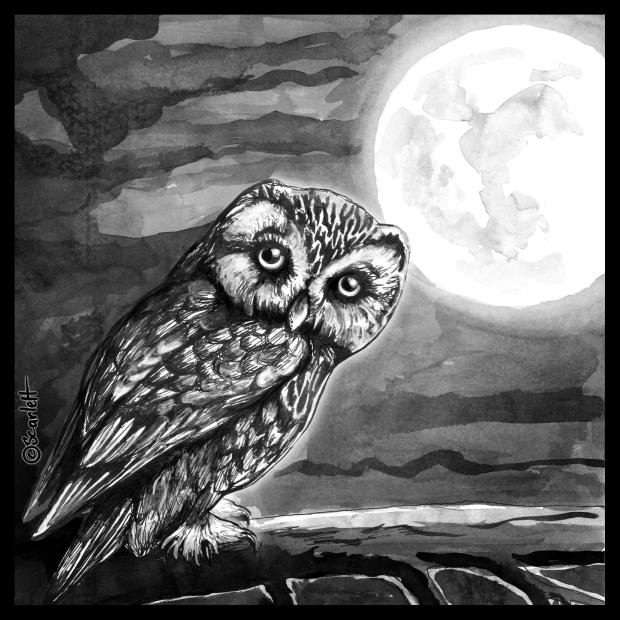 13-10-16-linfluence-de-la-pleine-lune