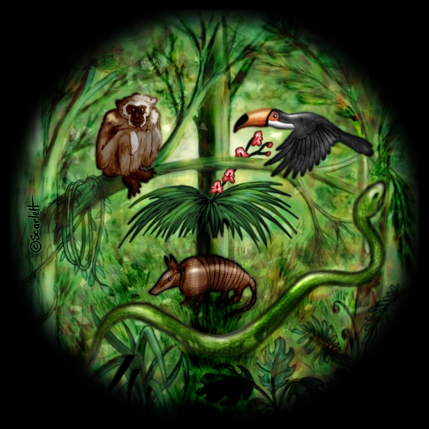 26-11-16 la jungle.jpg